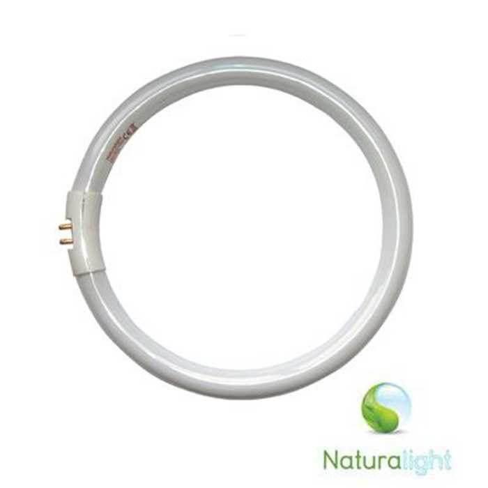Tube fluorescent 22W NATURALIGHT
