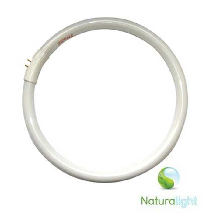 Tube fluorescent 13W NATURALIGHT